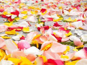 petales-de-fleurs-mariage